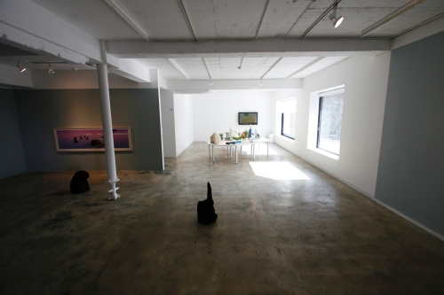 Flexible Landscape, installation view