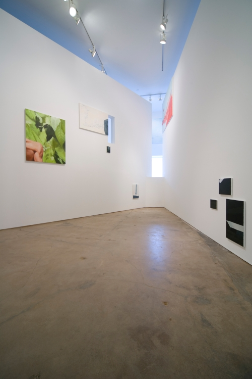 Santa Fe International Biennale, installation view