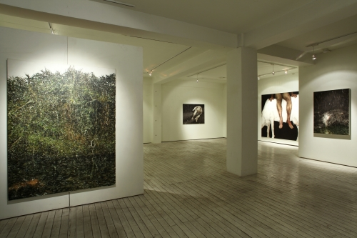 Installation view, Gallery mui