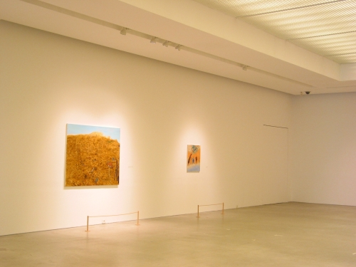Installation view, ARARIO GALLERY