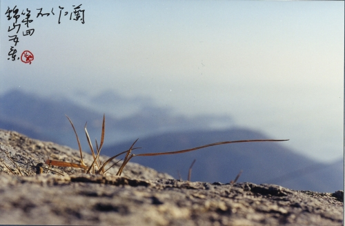 Five sights of the Geumsan Mountain, No. 4: Landscape of winter[Sehan-do: 歲寒圖].
