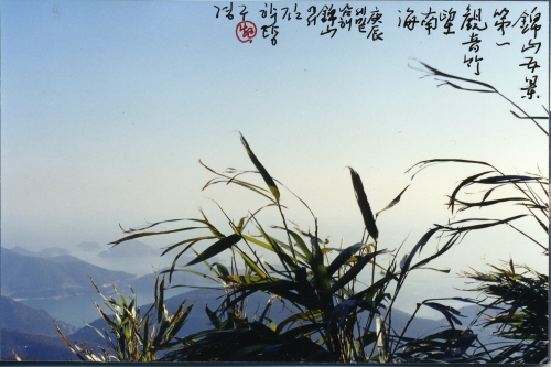 Five sights of the Geumsan Mountain, No. 1: Bamboos looking down the sea