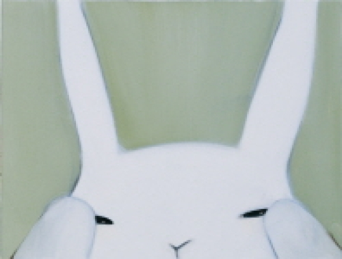 Photo of a big bunny  rabbit!