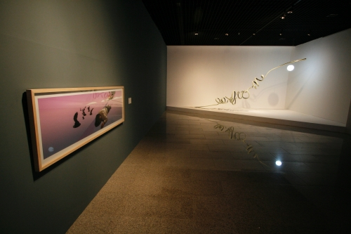 Close Encounter, Jeju Museum of Art, installation view