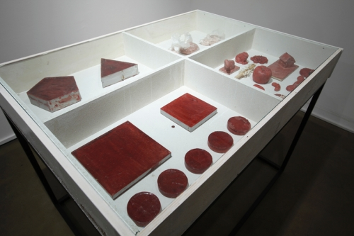 Objects Made from the Blood of a Butchered Cow